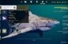 Maneater im blutigen Test: Open-Sea statt Open-World