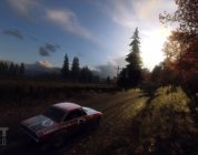 DiRT Rally 2.0: Screenshot