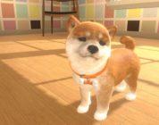 Little Friends: Dogs & Cats - Screenshot